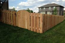 4' tall cedar shadow box fence with arched gate